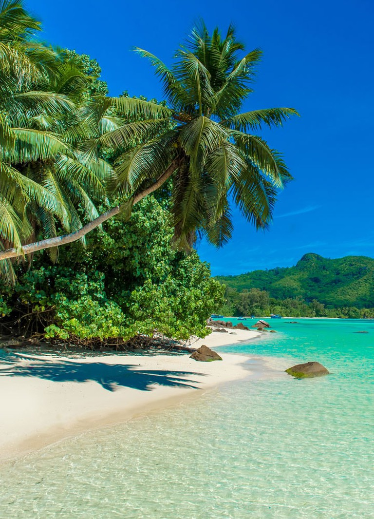 Crazy-Things-You-Have-To-Do-in-Africa_Seychelles
