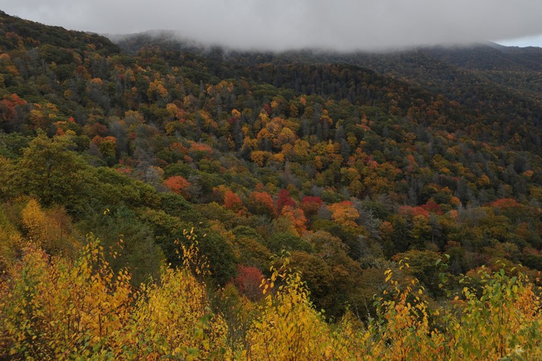 Great Smoky Mountains | © Carl Wycoff / Flickr