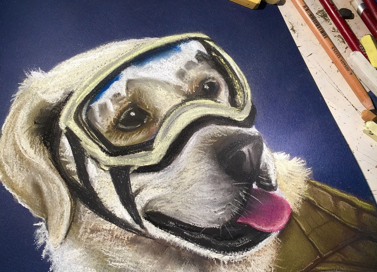 Frida the dog portrait