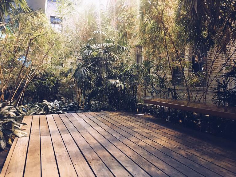 Bamboo Garden | © Sahar Aman