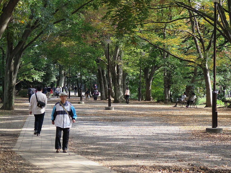 Out for a stroll in Kichijoji's Inokashira Park