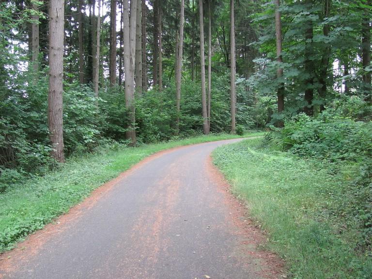 Interurban - North Trail | © Robert Ashworth / Flickr