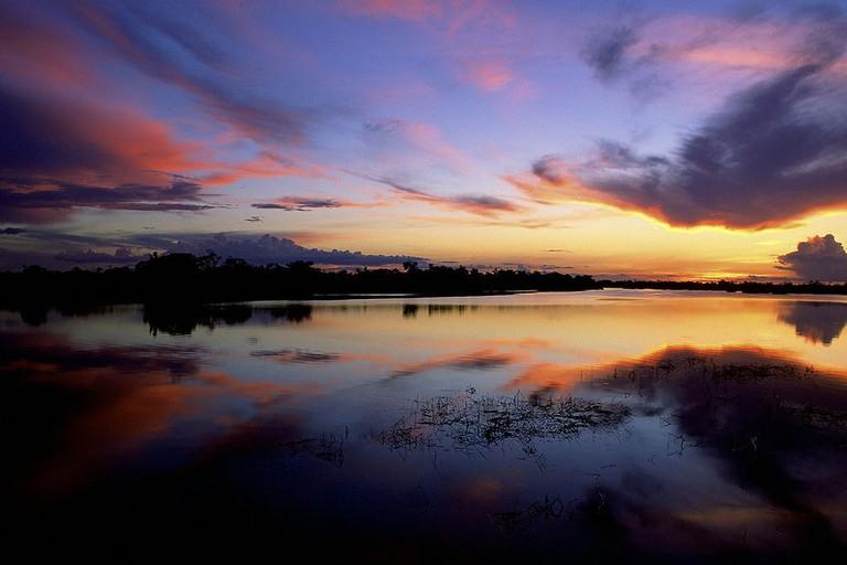 Jaú National Park | © Diego Lezama/WikiCommons