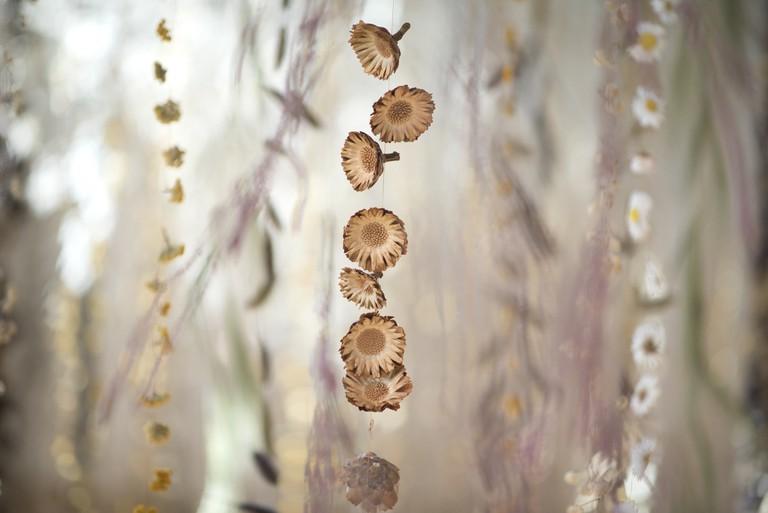 Detail of Life in Death   © RBG Kew