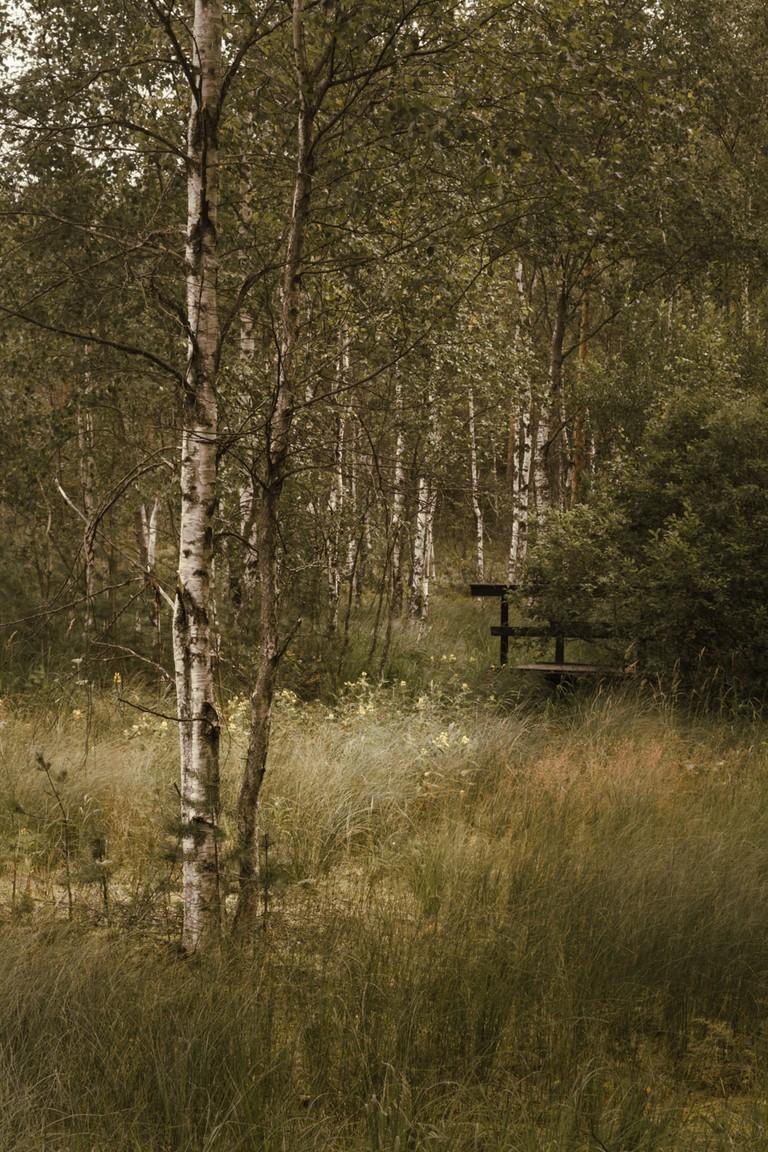 Nature trail at National park of Teijo | © Kati Kalkamo