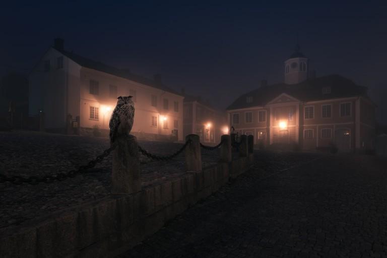 Owl | © Mikko Lagerstedt