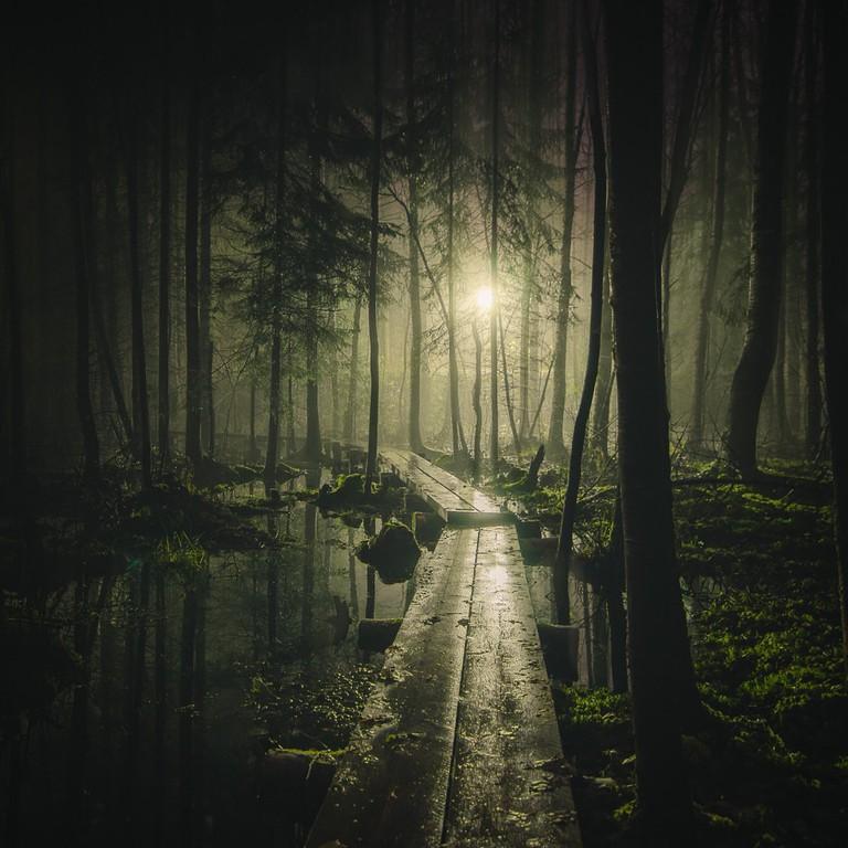 Pathway | © Mikko Lagerstedt
