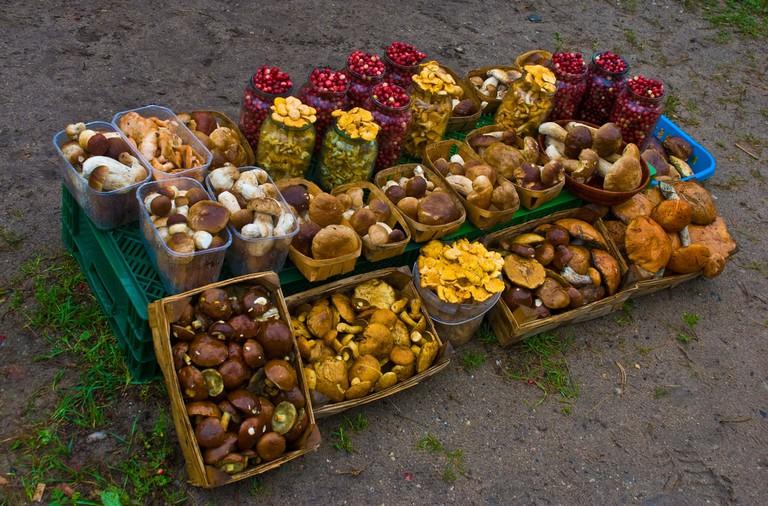 Mushroom stall in Lithuania
