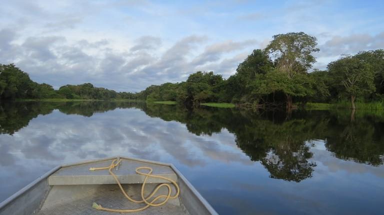 The Amazon river | © Pexels