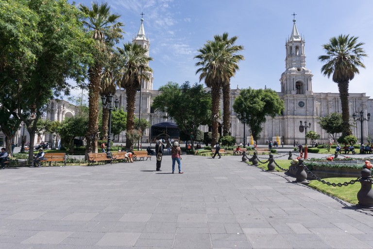 SCTP0090-Spingola-Arequipa00006