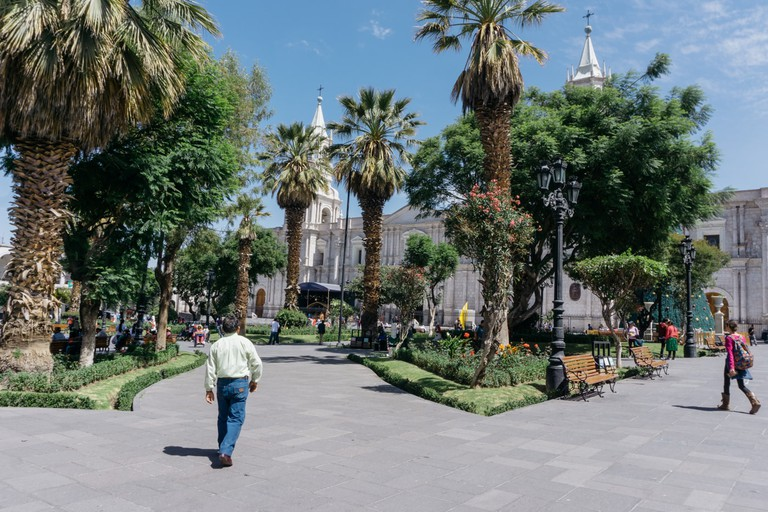SCTP0090-Spingola-Arequipa00007