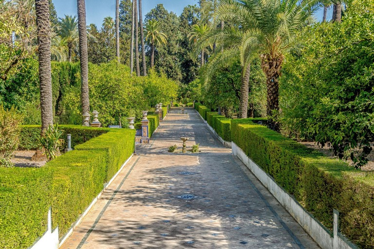 Tropical greenery in the Alcazar's extensive gardens; 12019/pixabay