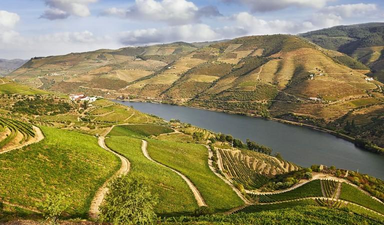 Beautiful Vineyards in Douro Valley, Portugal | © portumen/Shutterstock