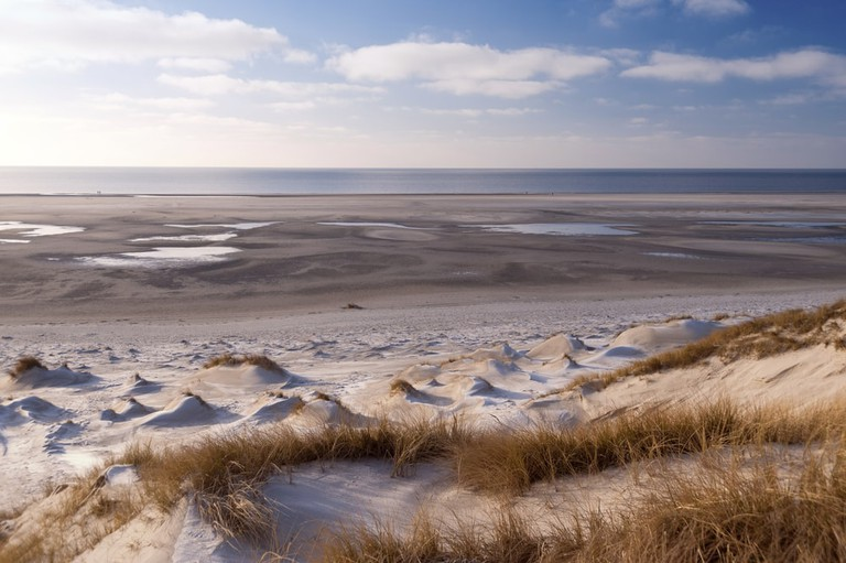 Dunes at the National Park Wattenmeer Schleswig-Holstein