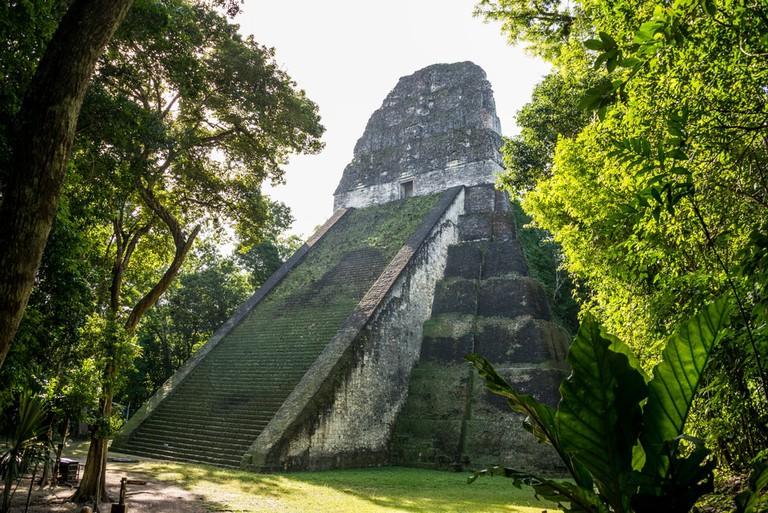 Mayan historic building at Tikal Jungle, Guatemala | © DC_Aperture/Shutterstock
