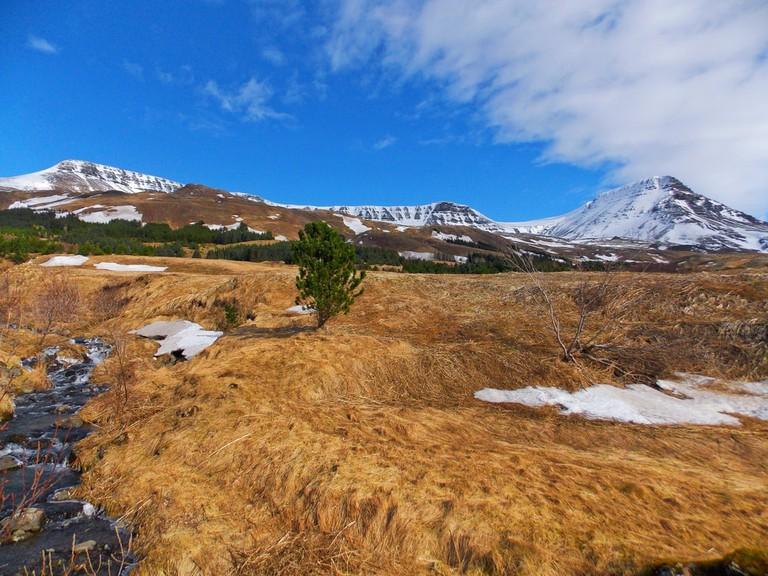 Mount Esja in springtime, Iceland   © Baraar/Shutterstock