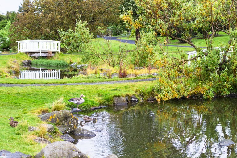 Reykjavik Botanical Gardens, Iceland   ©vvoe/Shutterstock