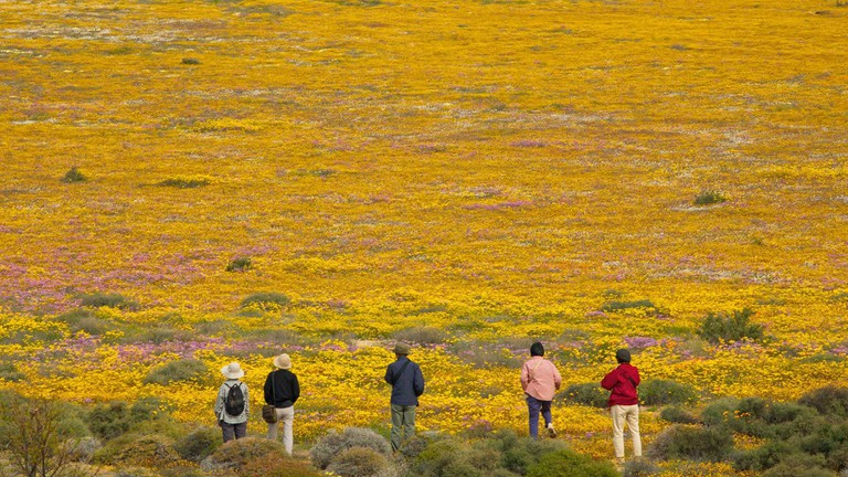 South-African-National-Parks_Namaqua