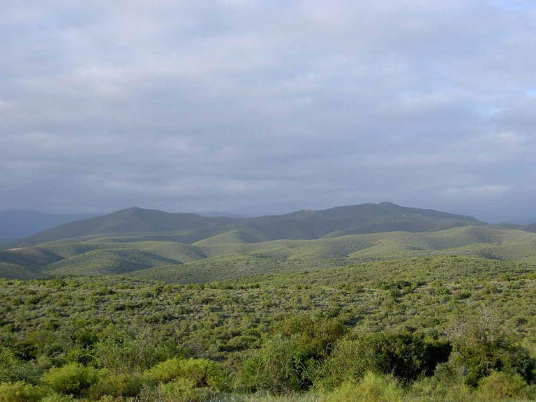 The-Most-Scenic-Road-Trips-to-Take-Across-South-Africa_Route-62
