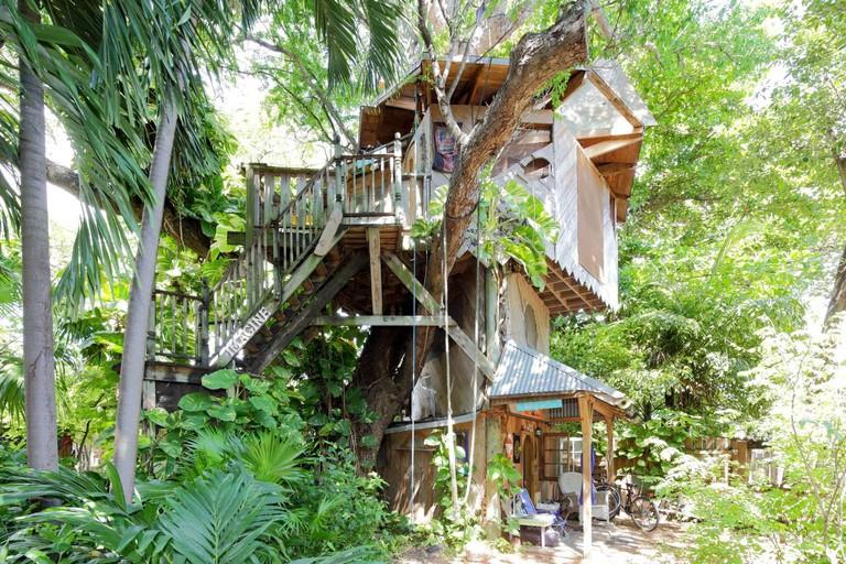 treehouse 1