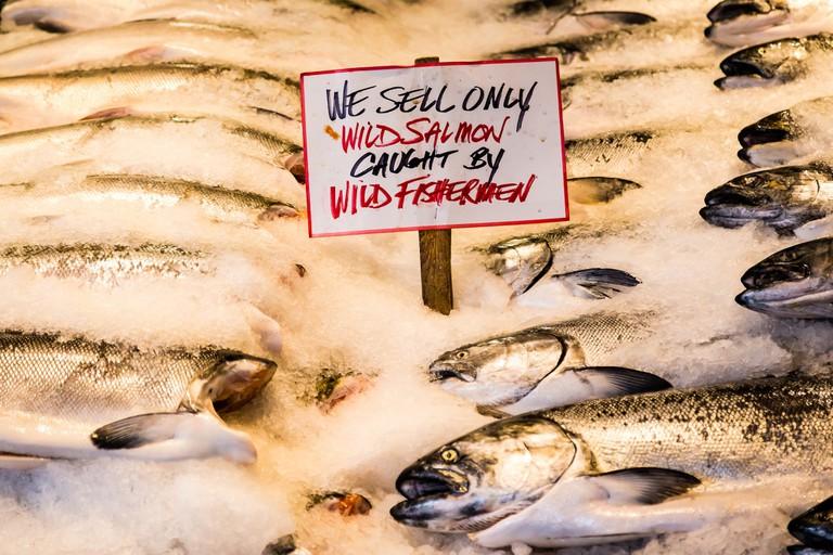 Wild Salmon   © Mobilus In Mobili / Flickr
