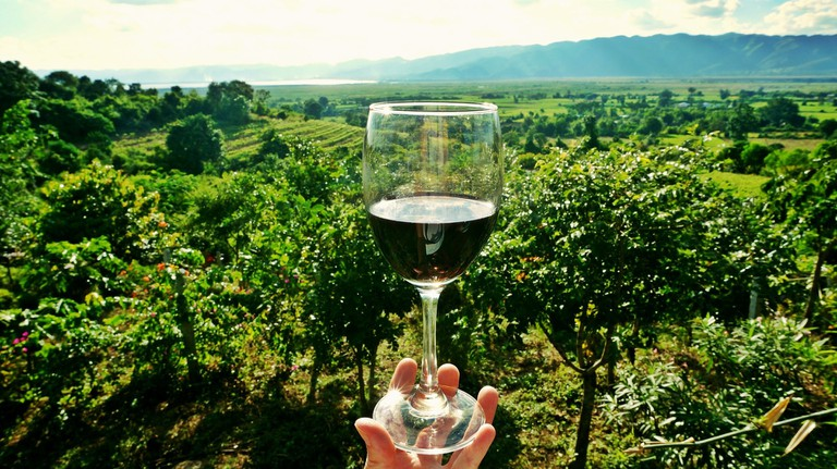 wine experiences in La Rioja, Spain | ©taniadelongchamp / Pixabay
