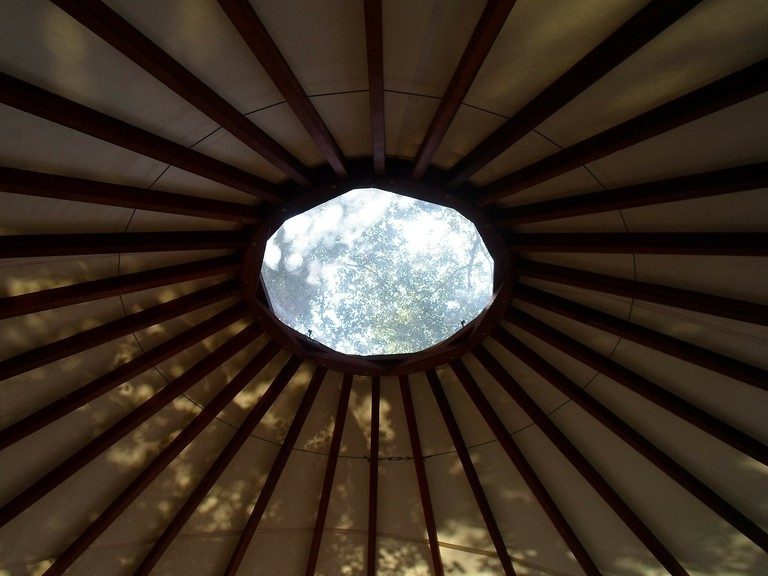 Yurt Views