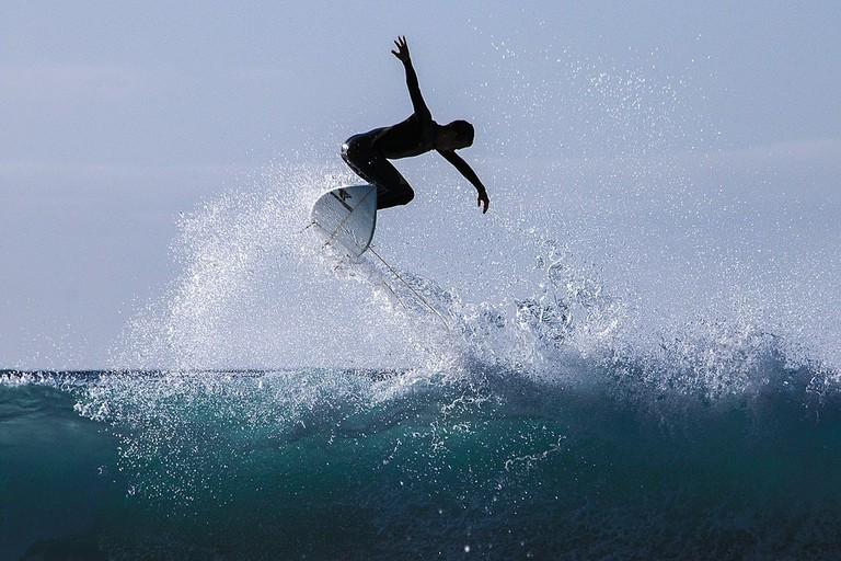 Tenerife surf   © Buiobuione / Wikimedia Commons