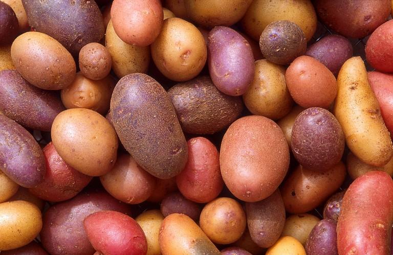 1280px-Patates