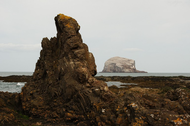 Bass Rock | © Magnus Hagdorn / Flickr
