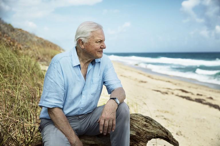 Sir David Attenborough in Blue Planet II | © BBC NHU 2017