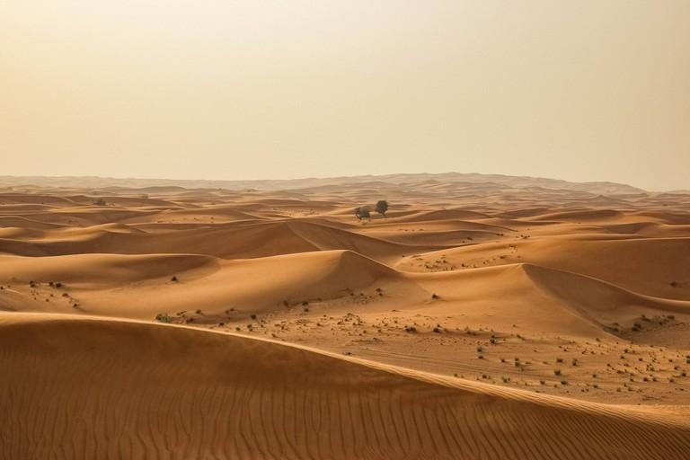 desert-1246282_1920