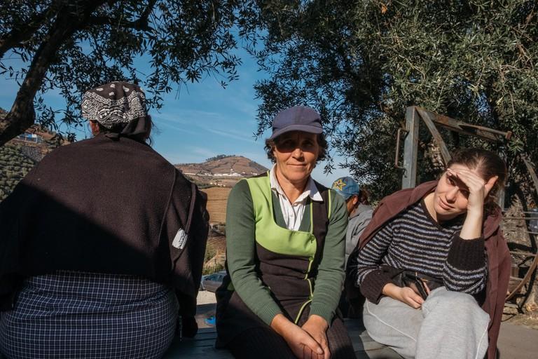 DSCF2850 - WATSON - PORTO, PORTUGAL - QUINTA DO VALALDO - QUINTA DO VALLADO WORKERS TAKE A BREAK