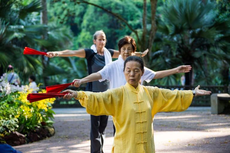 Tai Chi in the Botanic Gardens in Singapore