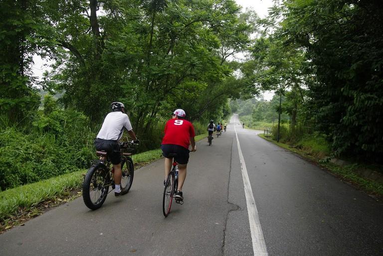 Cycling in Kranji
