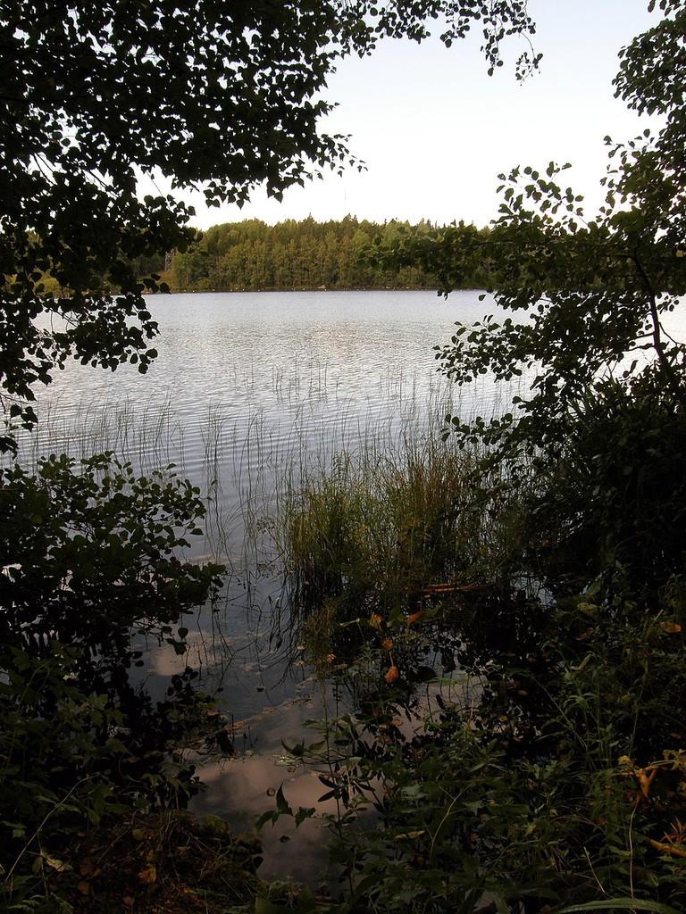 Lake_Lotila_-_panoramio