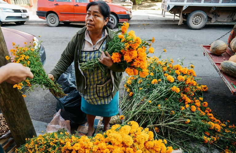 Oaxaca October 30 2017 (27 of 197)