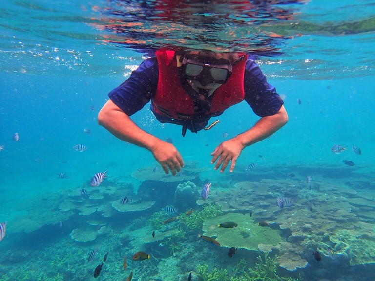 Playing with the coral fishes at Redang Island