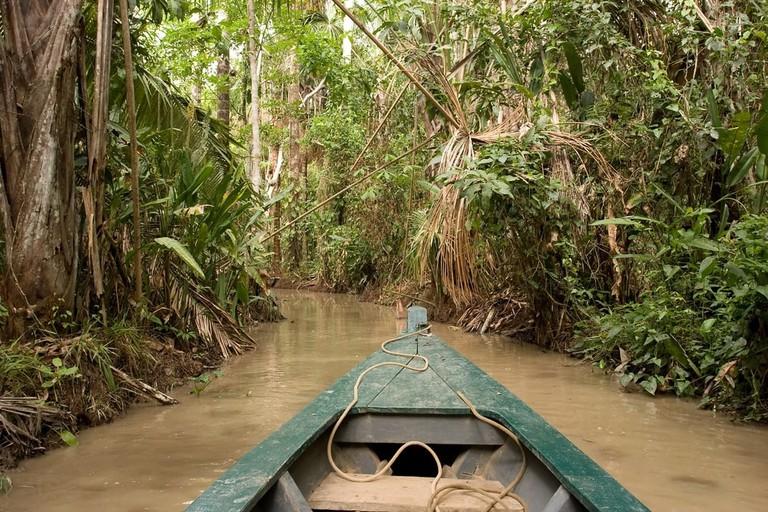 Peruvian Amazon Basin | ©Mariusz S. Jurgielewicz/Shutterstock