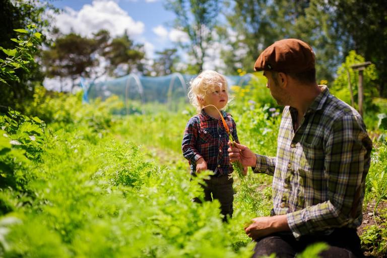 simon_paulin-organic_farming-5793
