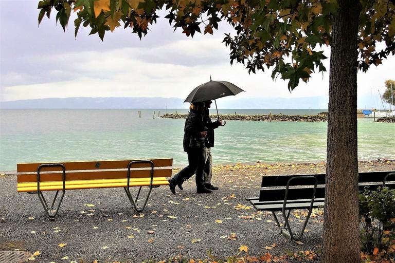 umbrella-2938559_1280