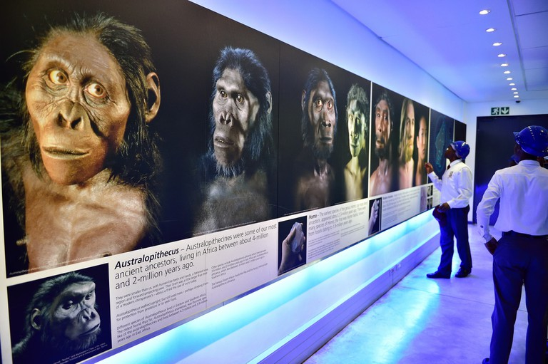 The evolutionary trail