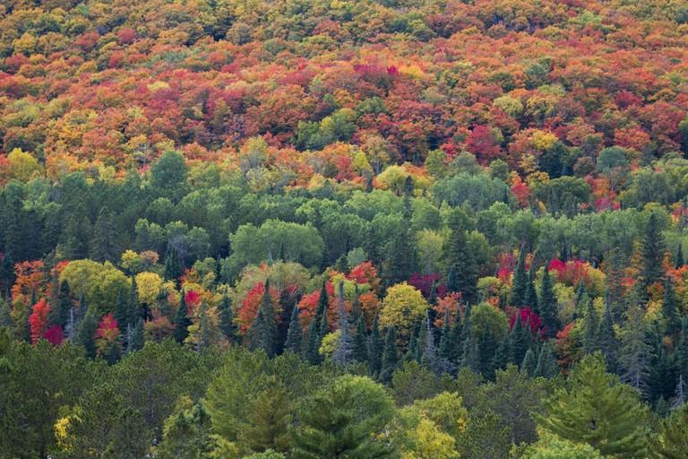 Algonquin Provincial Park Canadian Tourism Commission