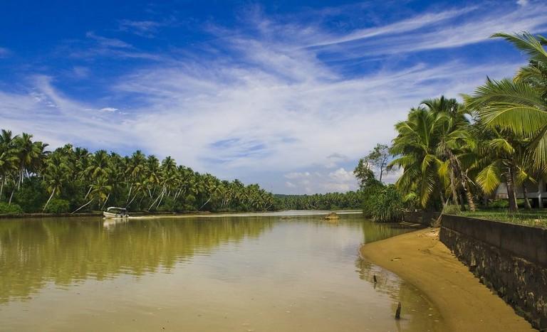 Backwaters Poovar