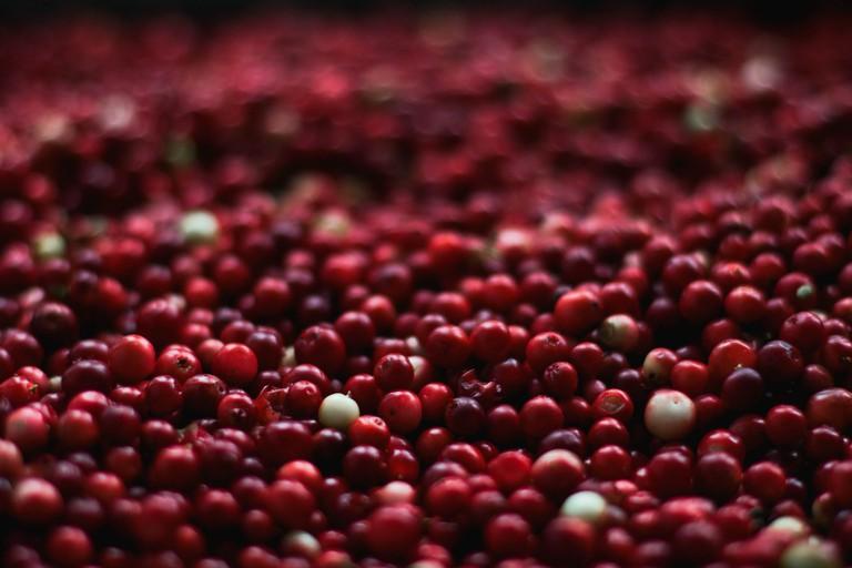berries-1851161_1920