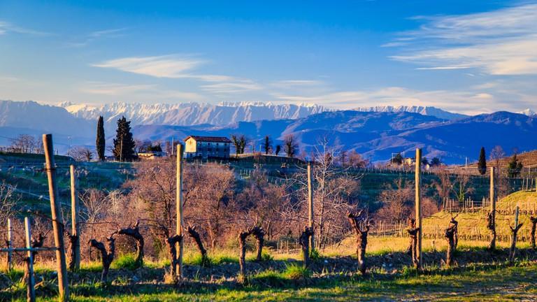 The sun sets over Friuli-Venezia Giulia's wine country   zakaz86/Shutterstock