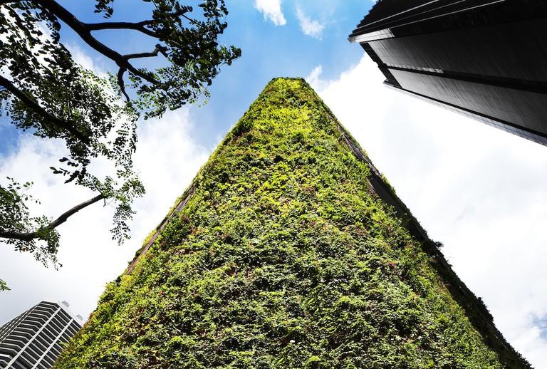 Oasia Hotel Downtown, Singapore_ Courtesy of WOHA Architects Pte. Ltd._ 2016 © Patrick Bingham-Hall