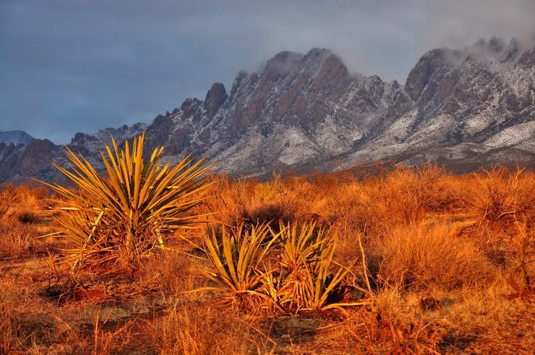 Organ Mountains-Desert Peaks | Bureau of Land Management Flickr