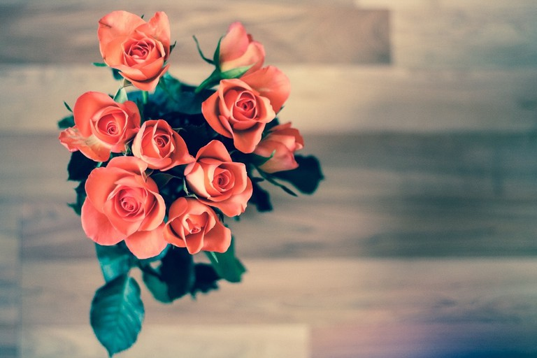 roses-690085_1280