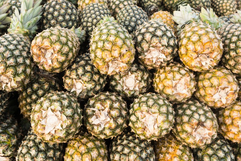Amazonian Pineapples   © Wagner Okasaki/Shutterstock
